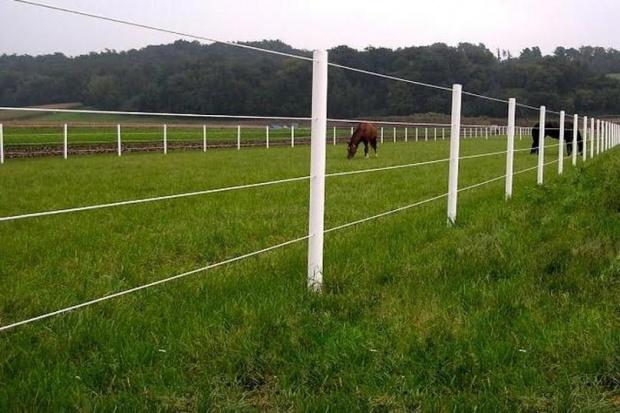 Ogłoszenie rolnicze: Equisafe - ogrodzenia elektryczne dla koni , pastuch