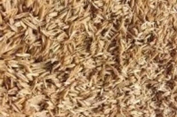 Ogłoszenie rolnicze: Otręby owsiane (łuska owsiana) z dostawą