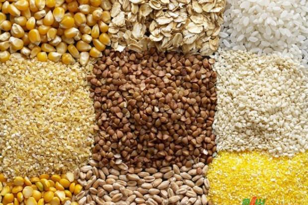 Ogłoszenie rolnicze: SPRZEDAJEMY ZBOŻA NA POPLON
