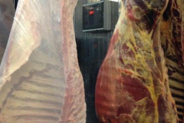 Ogłoszenie rolnicze: sprzedaż mięsa wołowego