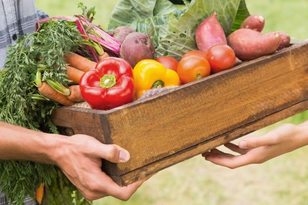 Ogłoszenie rolnicze: Warzywa Ekologiczne
