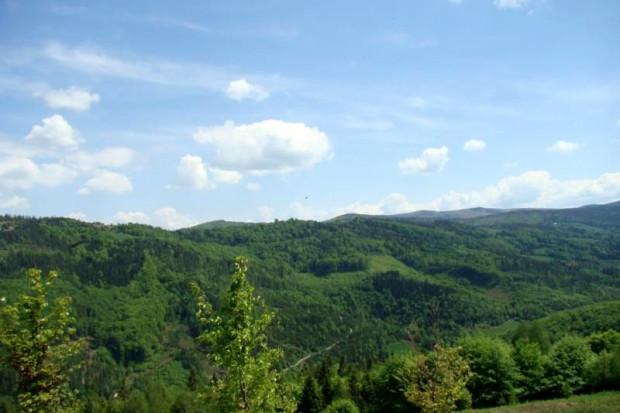 Ogłoszenie rolnicze: beskidy brenna 2,53 ha z prawem zabudowy