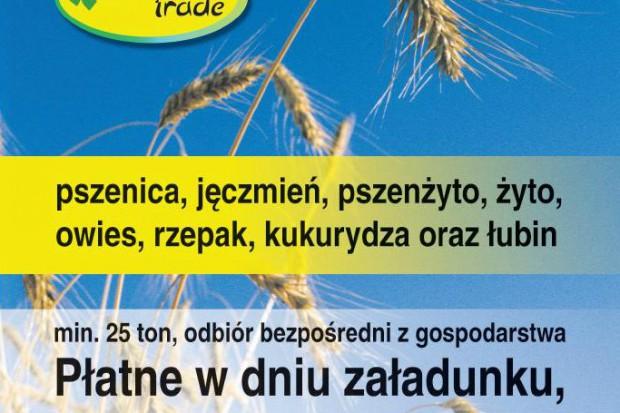 Ogłoszenie rolnicze: kupię żyto - skup żyta