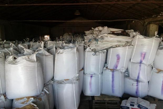 Ogłoszenie rolnicze: Kukurydza sucha paszowa ziarno