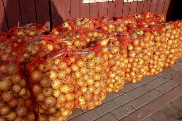 Ogłoszenie rolnicze: Cebula