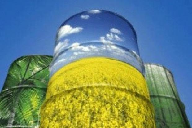 Ogłoszenie rolnicze: Ukraina. Olej rzepakowy 2,3 zl/litr + nasiona, sloma, biomasa, tluszcze