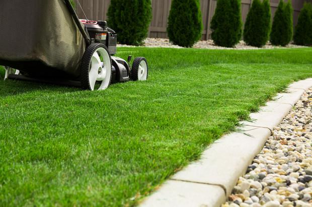 Ogłoszenie rolnicze: Koszenie trawników, wysokich traw i zarośli!