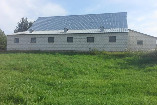 Ogłoszenie rolnicze: Gospodarstwo rolne na Suwalszczyźnie