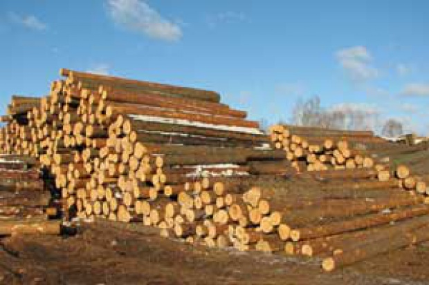 Ogłoszenie rolnicze: Ukraina.Opal biomasowy,wiory na rozpalke,kora 4zl worek 70L