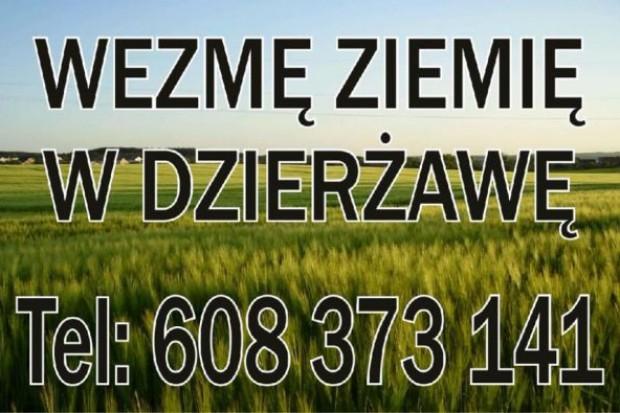 Ogłoszenie rolnicze: wydzierżawię ziemię rolną Lubawa Brodnica Iława Rypin