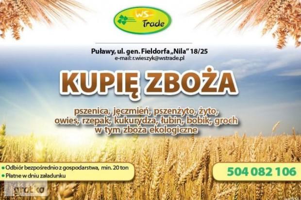 Ogłoszenie rolnicze: kupię żyto ekologiczne