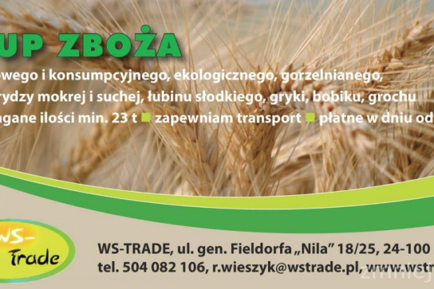 Ogłoszenie rolnicze: kupię zboża- skup zboża woj lubelskie