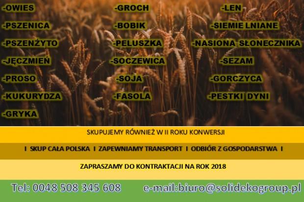 Ogłoszenie rolnicze: Pszenżyto ekologiczne