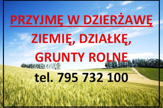 Ogłoszenie rolnicze: WEZMĘ W DZIERŻAWĘ GRUNTY ROLNE, NIEUŻYTKI
