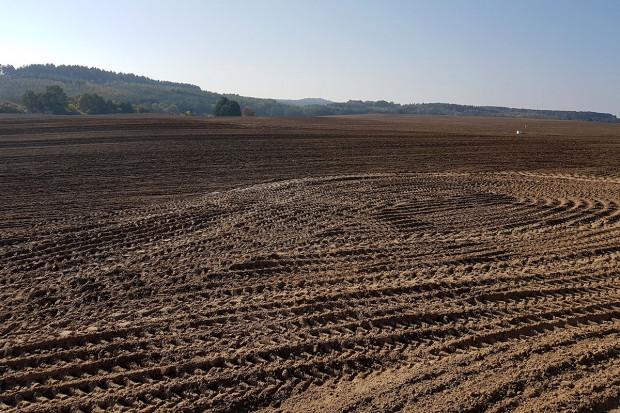 Ogłoszenie rolnicze: Ziemia, Grunty Rolne, 160 ha, Magazyn, Wielkopolska, Powiat Złotowski