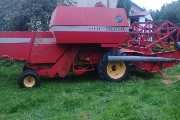 Ogłoszenie rolnicze: Sprzedam kombajn zbożowy Massey Ferguson 187