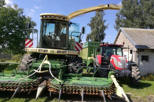 Ogłoszenie rolnicze: Usługi, Zbiór kukurydzy na kiszonkę, KRONE BIG X 500 wraz z odwozem.