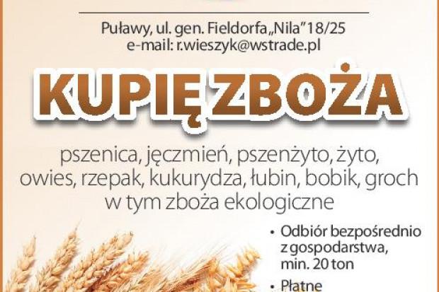 Ogłoszenie rolnicze: kupię łubin - skup łubinu