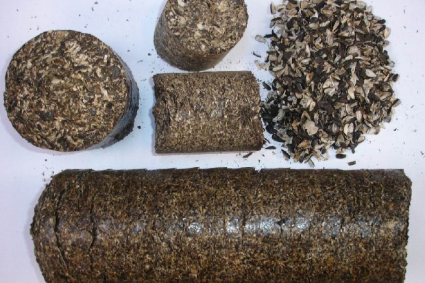 Ogłoszenie rolnicze: Ukraina. Pellety, brykiety slonecznikowe 200 zl/tona + makuch rzepakowy
