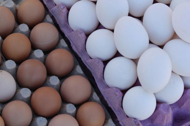 Ogłoszenie rolnicze: Ukraina. Jaja kurze dietyczne od 1,7zl opakowanie 10szt. Swieze pasze,mieso