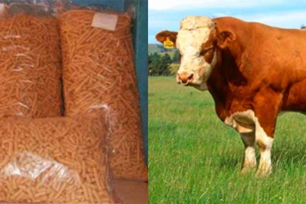 Ogłoszenie rolnicze: Ukraina.Pasza granulowana w workach,premiksy zbilansowane 300 zl/tona