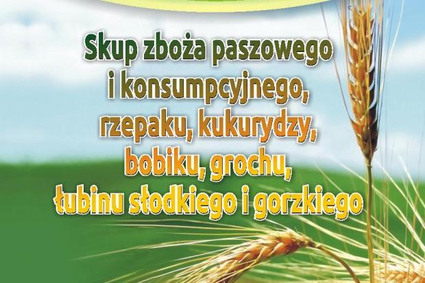 Ogłoszenie rolnicze: kupię pszenicę- skup pszenicy