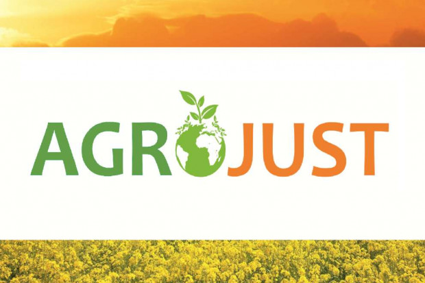Ogłoszenie rolnicze: Kupimy każdą ilość łubinu.