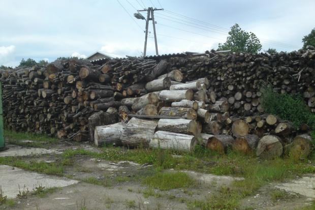Ogłoszenie rolnicze: Sprzedam Drewno opałowe, liściaste, w wałkach TANIO ! Elbląg   Braniewo