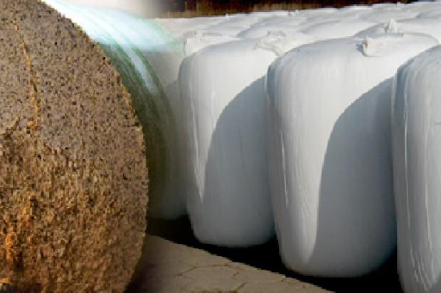 Ogłoszenie rolnicze: wysłodki buraczane w belach