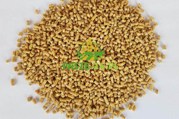 Ogłoszenie rolnicze: Pasza dla przepiórek niosek - drobny granulat