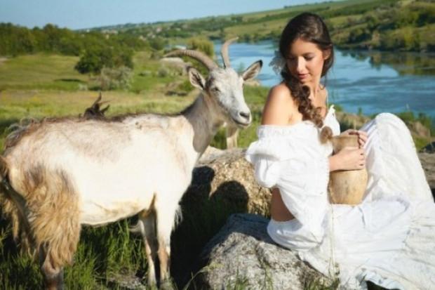 Ogłoszenie rolnicze: Ukraina. Owce kozy miesne 140 zl/szt, jagniecina 3 zl/kg + 10tys.ha nieuzytkow