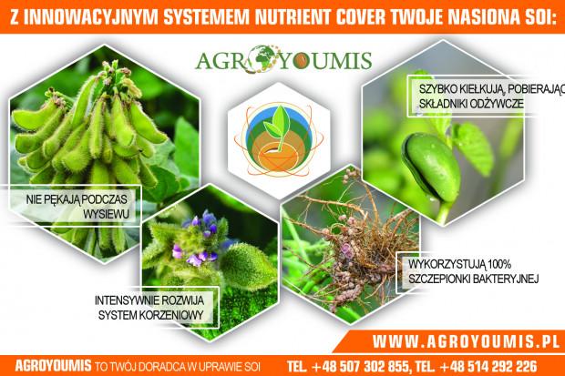 Ogłoszenie rolnicze: nasiona soi gotowe do siewu