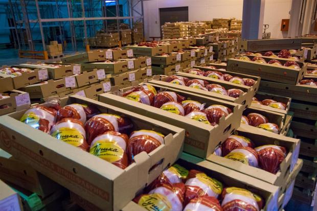 Ogłoszenie rolnicze: Ukraina.Sprzedam tuszki kurczaka 4 zl/kg,filet 5 zl swiezy bez kosci lub mrozony