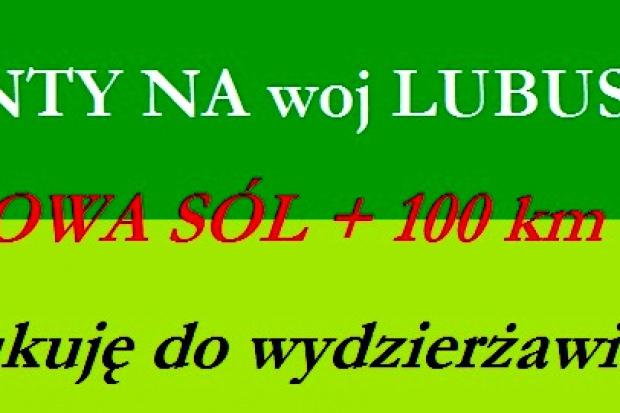 Ogłoszenie rolnicze: 100 ha gruntów ornych poszukuję do dzierżawy